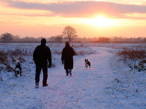 'Coldest night of winter' recorded in Norfolk