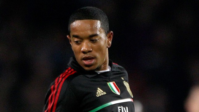 New recruit: Urby Emanuelson has joined Fulham until the end of the season (Picture: PA)