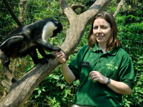 Andrea Dempsey: My job as a zookeeper revolves around the unpredictable