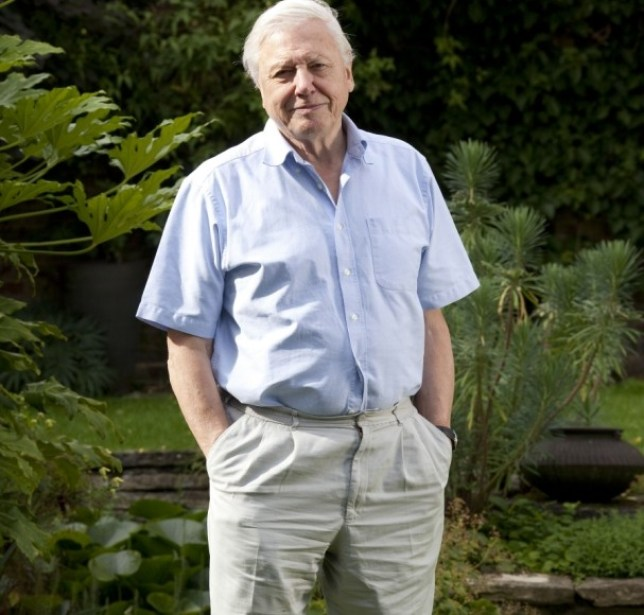 David Attenborough is the global face of natural history (Picture: Rex)