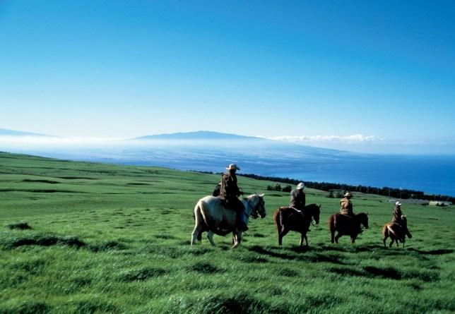 Paniolo Ranch, Hawaii