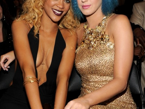 Katy Perry and Rihanna cement their reconciliation by planning a 'safari in Africa' together