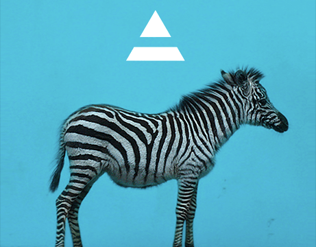 30 Seconds To Mars to release new album LOVE LUST FAITH + DREAMS