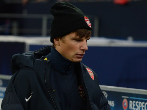 Andrey Arshavin 'set to retire when his Arsenal contract expires'