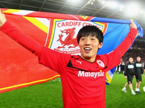 Top 10 things you need to know about Premier League new boys Cardiff City