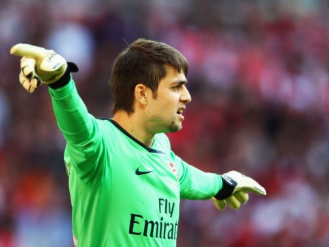 Arsenal suffer blow as Lukasz Fabianski ruled out with rib injury