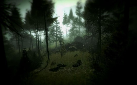 Slender: The Arrival (PC) – do you see him?
