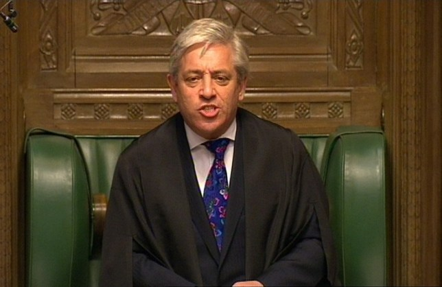 The speaker of the House of Commons, John Bercow, has ruffled feathers with his remarks. (Picture: PA)