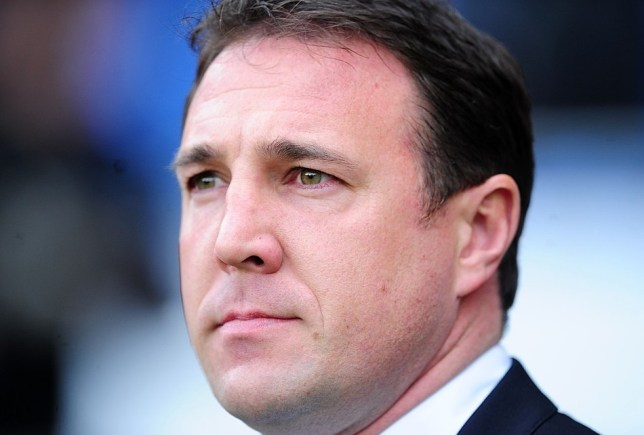 Cardiff City manager Malky Mackay. PA Wire/Press Association Images