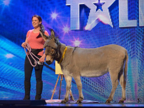 Gallery: Britain's Got Talent 2013 auditions 6