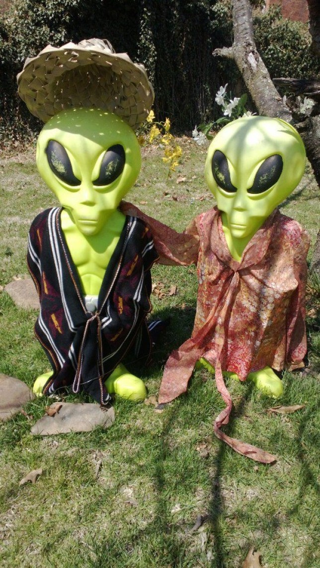 Dian Bolling: Missing Virginia aliens