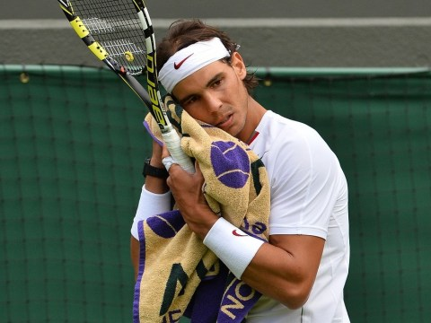 Andrew Castle: Rafael Nadal's demise clears Wimbledon path for Andy Murray