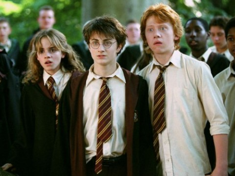 27 reasons we all wanted to attend Harry Potter's Hogwarts School Of Witchcraft and Wizardry