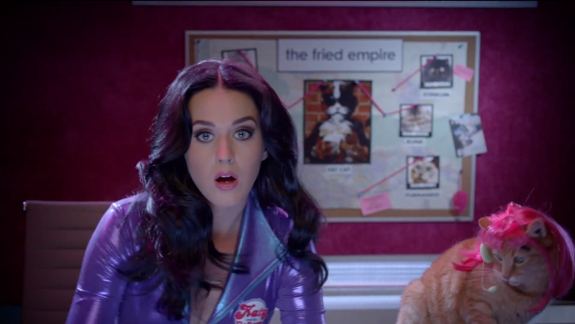 Eye popping: Katy Perry stars alongside some wig wearing cats in a hilarious promotional video (Photo: YouTube)