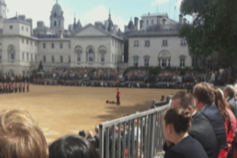 Soldier faints during Trooping the Colour parade for Queen's birthday