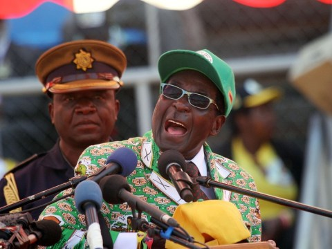 Mugabe more likely to remain a lion or a croc than a leopard changing spots