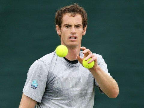 Wimbledon 2013: I just can't afford to hold back in Fernando Verdasco showdown, says Andy Murray