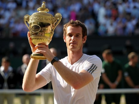 Andrew Castle: Level-headed champ Andy Murray set for a long stay at the top
