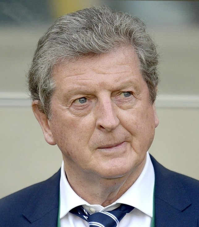 Worrying times: Hodgson's England have dropped as low as 15th in the Fifa rankings (Picture: PA)
