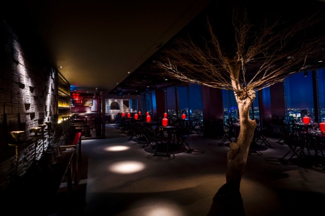 You might use the wishing tree in Hutong on Level 33 of The Shard to speed up the service a bit (Picture: Paul Winch-Furness)