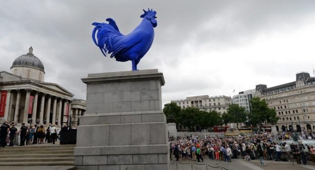 Katharina Fritsch: Blue cockerel unveiled on Fourth Plinth in London's Trafalgar Square