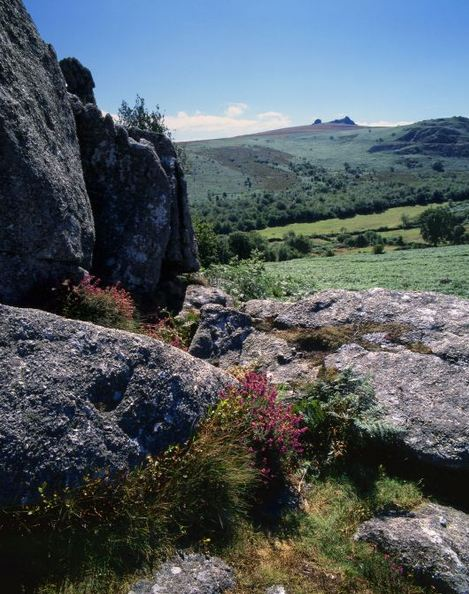 Dartmoor fall kills mother and young son at Haytor
