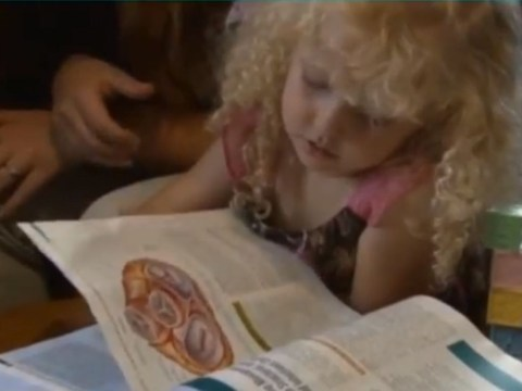 Three-year-old girl joins Mensa with higher IQ than David Cameron