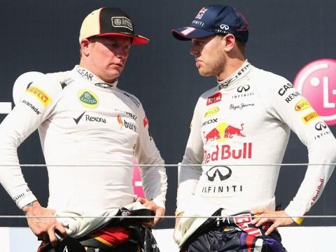 Sebastian Vettel won't influence Red Bull's driver decision, says Christian Horner