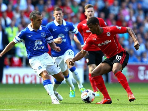 Cardiff City continue to make home ground a fortress after holding Everton