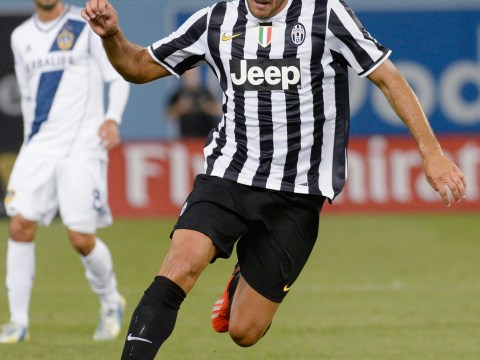 Newcastle join Everton and Sunderland in race for Juventus striker Alessandro Matri
