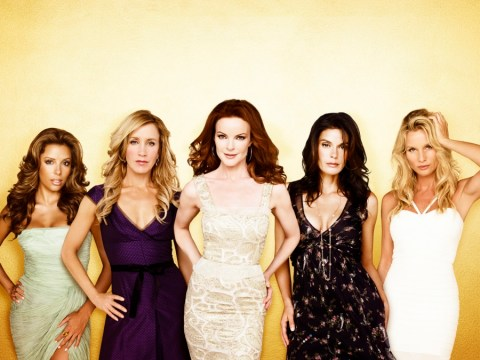 Life beyond Wisteria Lane: What the Desperate Housewives are doing now