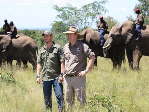 Poaching Wars With Tom Hardy: The man should play Tarzan