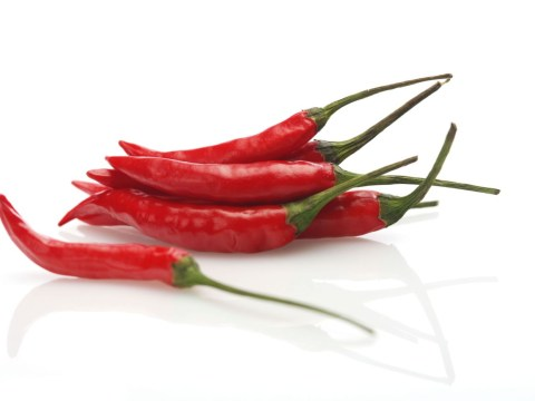 Could chilli peppers help with a cure for migraines?
