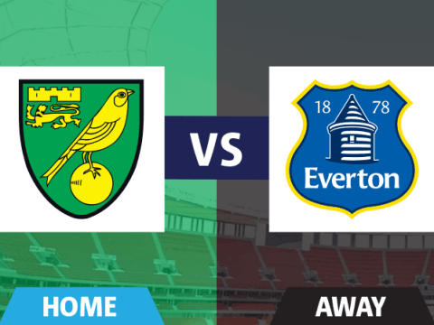 Norwich verdict: Nathan Redmond and Steven Whittaker the pick of the yellow bunch in Everton draw