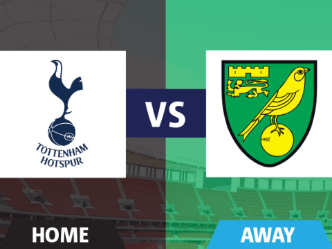 Tottenham v Norwich fans' view: Horror show at the Lane for City as Spurs have it far too easy