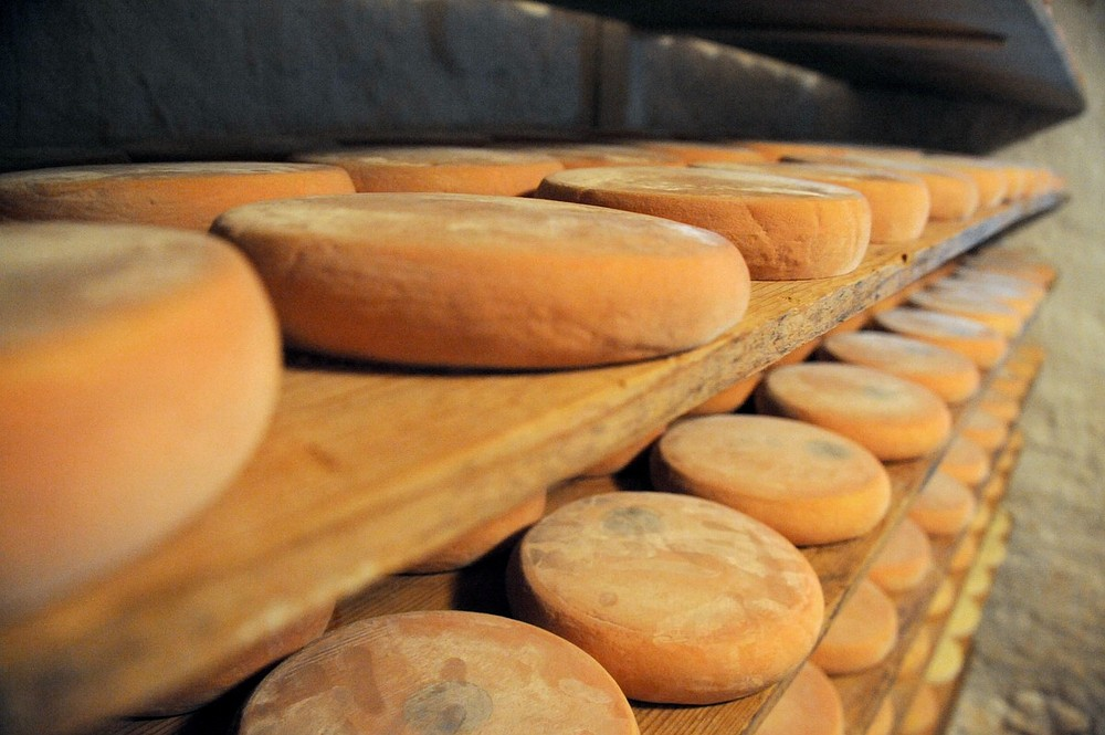 The good cheese guide to London