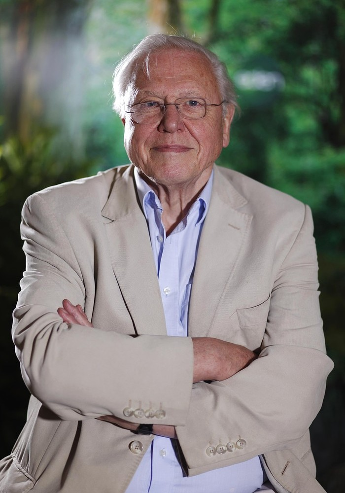 After David Attenborough's comments on overpopulation: Are large families irresponsible?