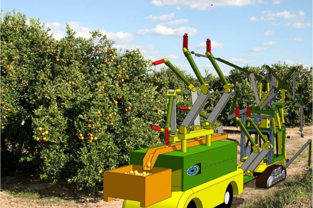 The farmer of the future? The fruit picking Orange Harvester (Picture: Vision Robotics)