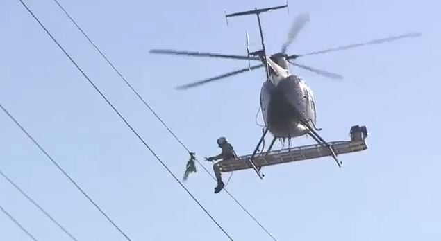 Helicopter crew rescues stricken seagull from power line after it gets trapped for 24 hours