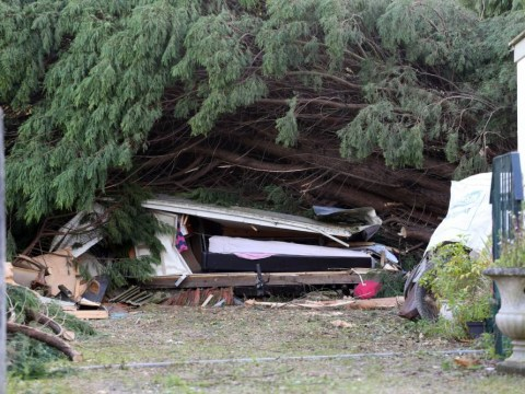 UK storm: Teenage girl and man in 50s killed by falling trees named