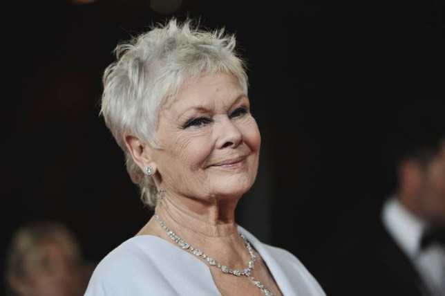 Judi Dench is the latest name to be linked to Star Wars Episode 7 (Picture: Getty Images)