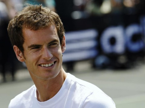 The top ten tennis bets for 2014: Andy Murray can cling on to his Wimbledon crown but Novak Djokovic will emerge as No.1