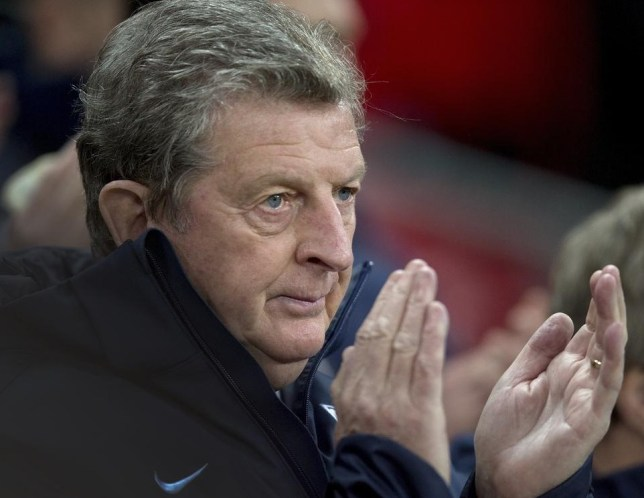 Roy Hodgson is the man with a plan (Picture: AP)