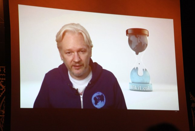Julian Assange appears via Skype at M.I.A.'s show (Picture: Getty)