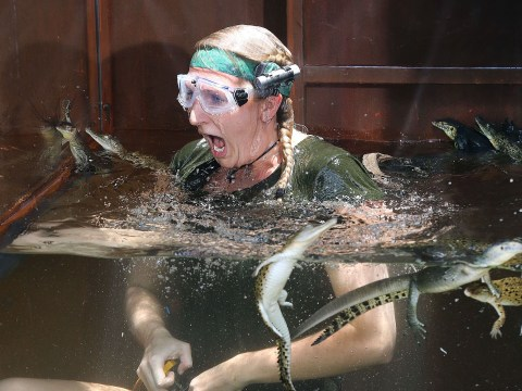 Gallery: I'm A Celebrity… Get Me Out Of Here 2013 – Day 12
