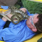 ***EMBARGO NOT TO BE USED BEFORE 21:00 17 Nov 2013 - EDITORIAL USE ONLY - NO MERCHANDISING***  Mandatory Credit: Photo by ITV/REX (3377319g)  Bush Tucker Trial - 'Turntable of Terror' Matthew Wright is covered in pythons  'I'm A Celebrity...Get Me Out Of Here!' TV Programme, Australia - 16 Oct 2013  This seasons celebrities at BTT 'Turntable of Terror' in their team colours
