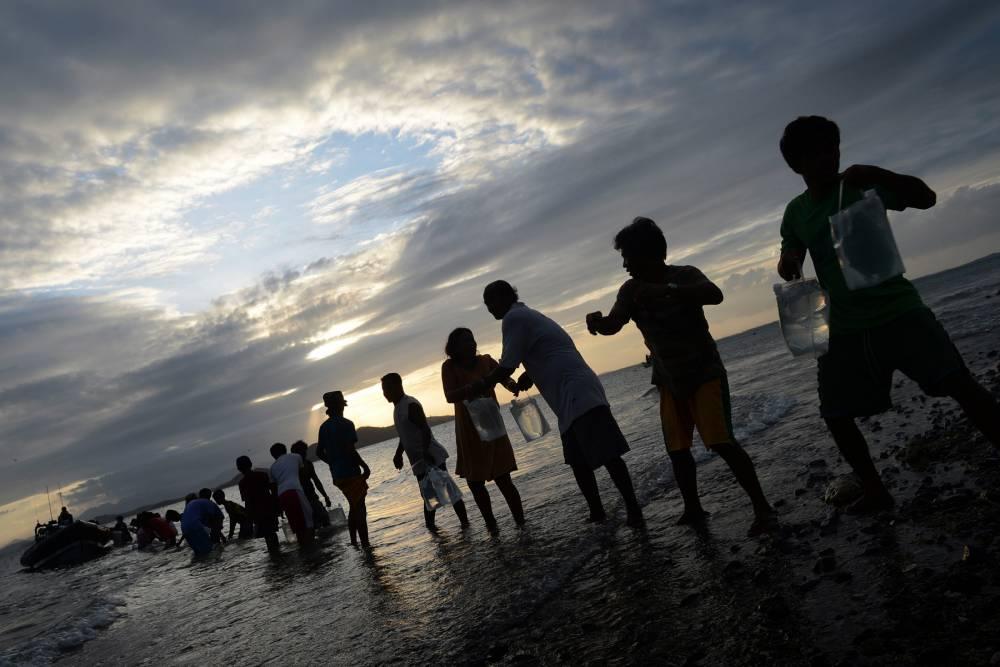 Typhoon Haiyan: Britons pledge £50m in a week