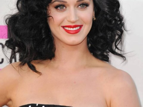 More followers than Lady Gaga, Justin Bieber and Barack Obama – Katycats make Katy Perry the Queen of Twitter