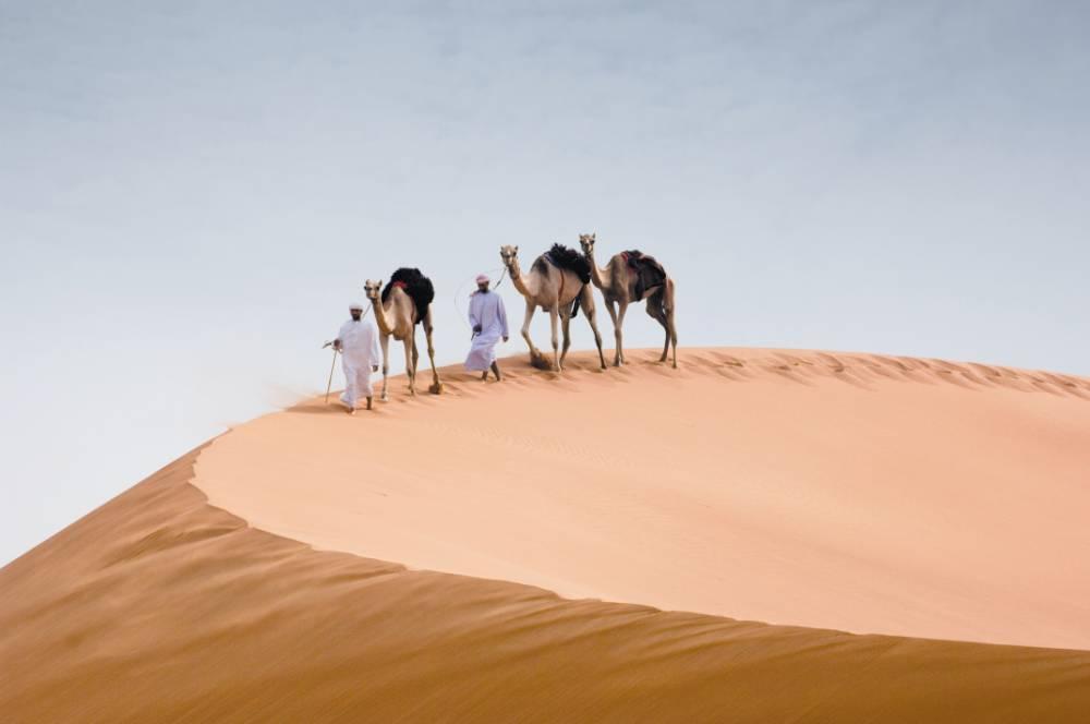 Get revved up in Abu Dhabi