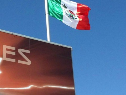 Dopey McLaren apologise to Mexico for marijuana flag gaffe at US Grand Prix